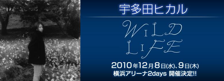 Utada Hikaru's Concert, Streamed LIVE,