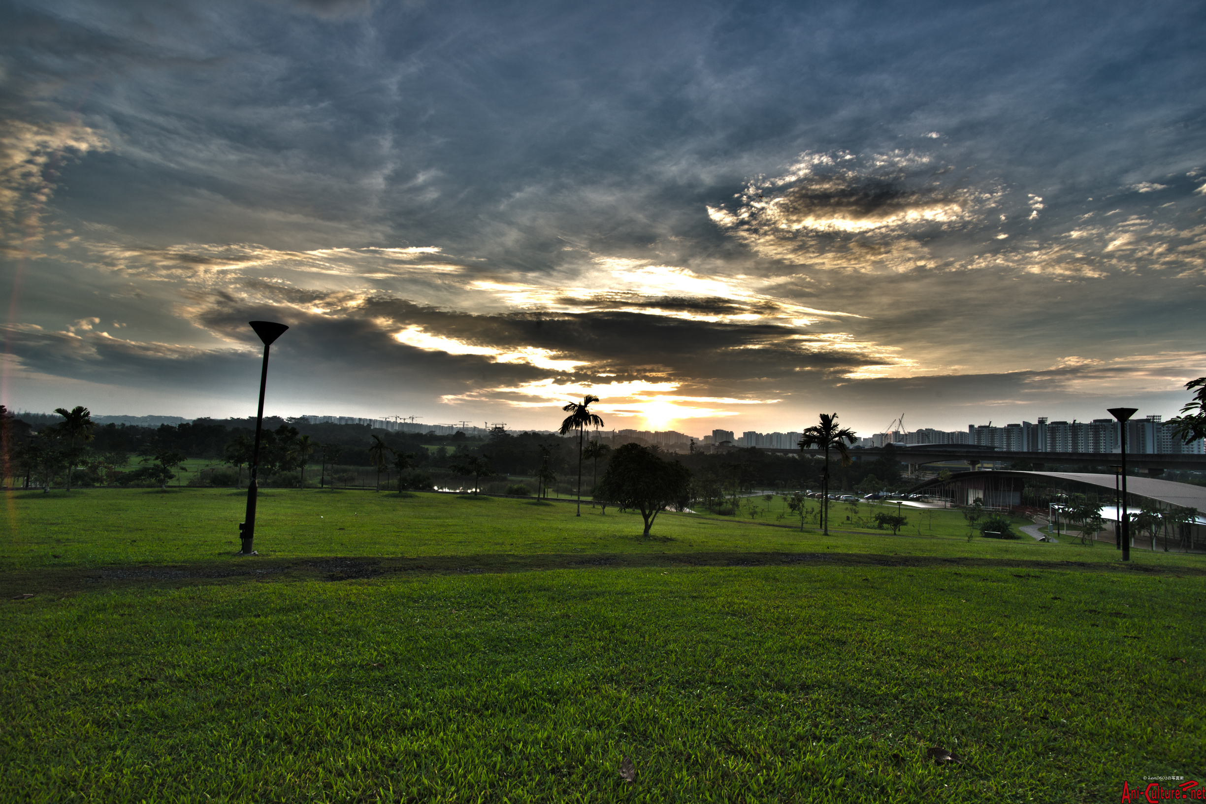 SG: Early morning in Sengkang Riverside Park.