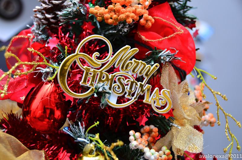 Merry Xmas Everybody! XD