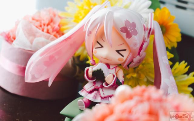 Sakura Miku Summerssad-1